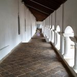 Sigiriya – Aukana – Dambulla – Roca del León – Sigiriya