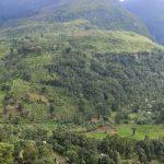 Sigiriya – Aluvihara – Matale – Kandy