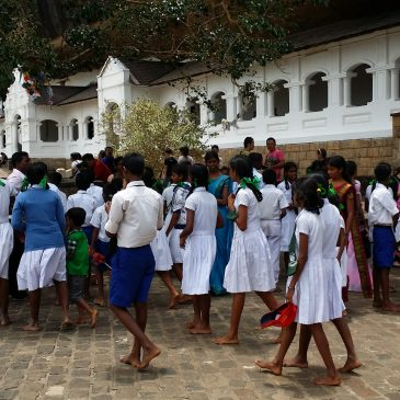 Hikkaduwa – Colombo ¡La despedida!