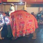 Kandy durante el Esala Perahera Festival