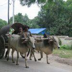 Información útil: Transportes en Myanmar