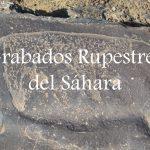 Videos: Grabados Rupestres del Sáhara