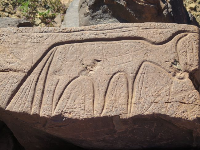 Petroglifos Tafilalet