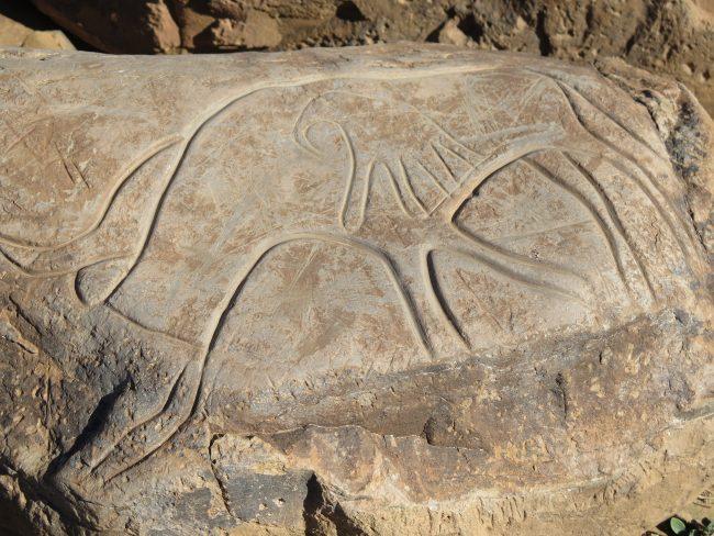 Neolítico en el Sáhara
