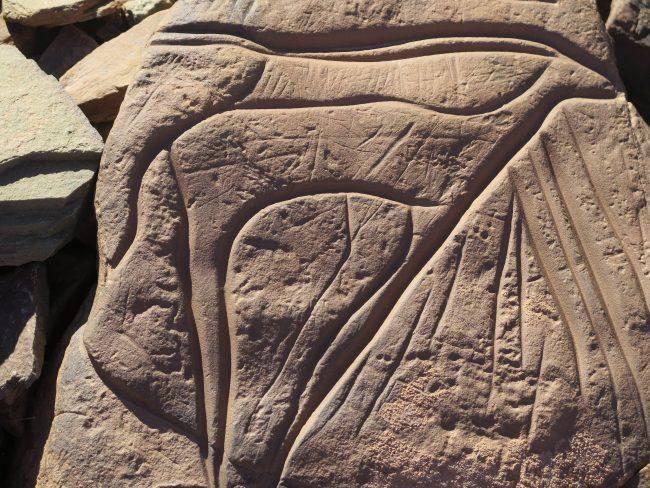 Petroglifo de estilo tazina
