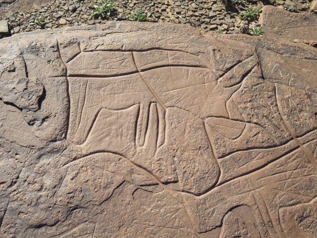 Petroglifos Marruecos