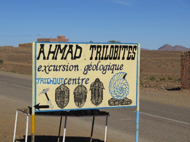Cartel publicitando una tienda de fósiles y trilobites