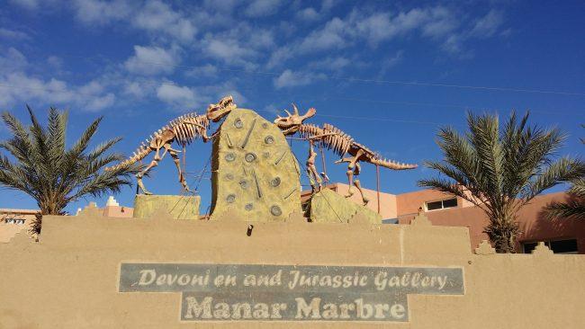 Fósiles del desierto