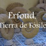Video: Erfoud, Tierra de Fósiles