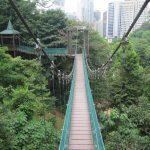 Reserva Forestal Bukit Nanas. KL Forest Eco Park. La Selva de Kuala Lumpur.