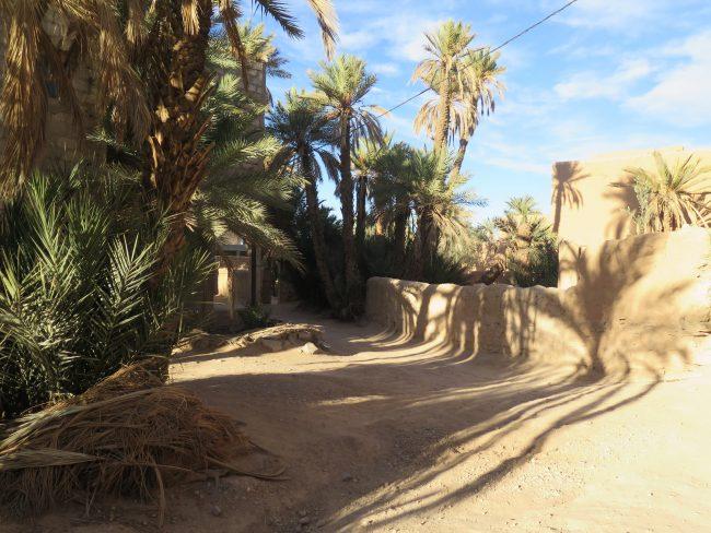 Oasis del Tafilalet