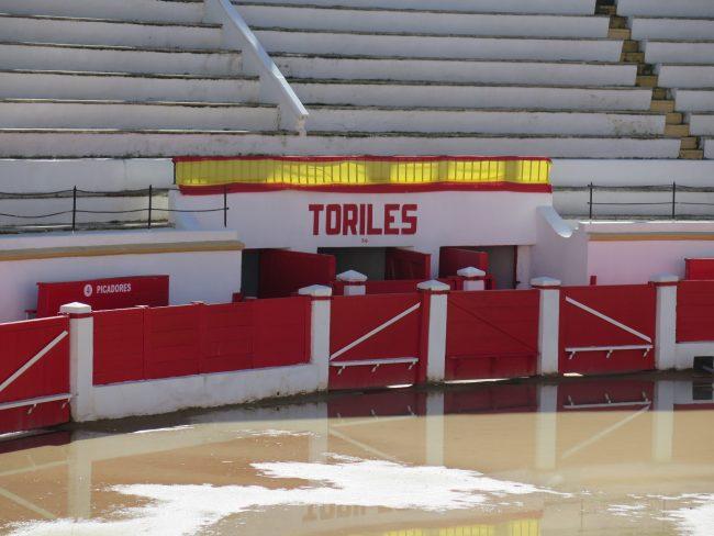 Toriles Plaza de Toros Melilla