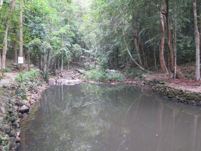 Naturaleza Koh Phangan