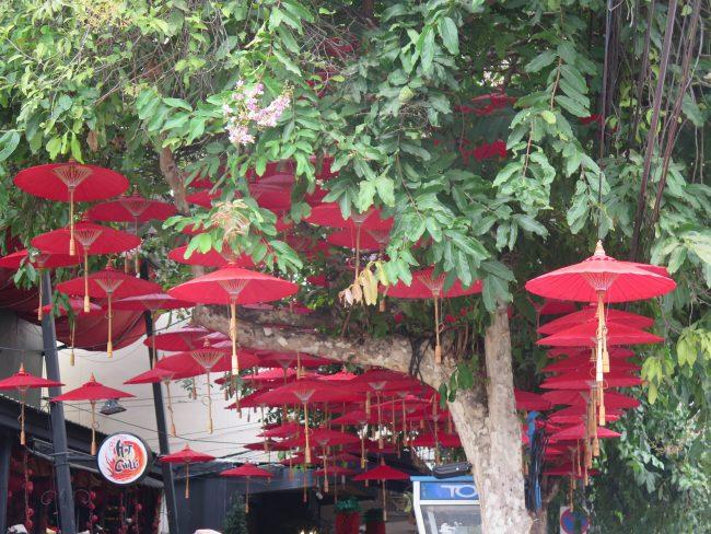Dónde comer en Chiang Mai