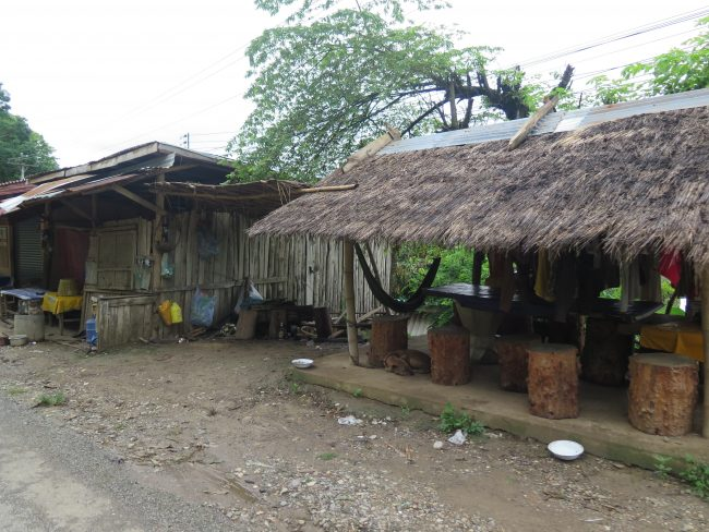 Visitas a los alrededores de Luang Prabang