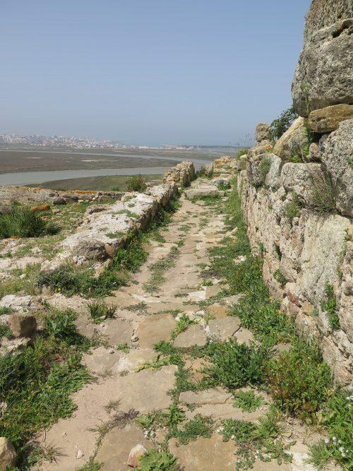 Ruinas romanas cercanas a Larache