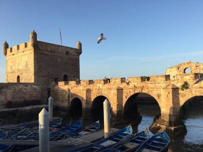 IMG_5722-min-e1531087088317 ▷ Essaouira