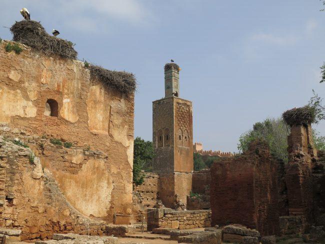 Restos merinidas en Rabat