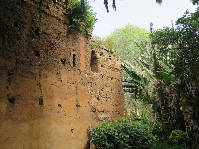 Jardín tropical Rabat