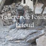 Videos: Los talleres de fósiles de Erfoud