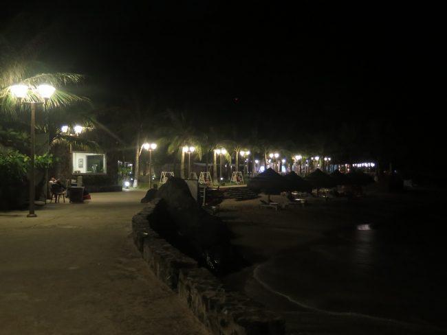 Bioluminiscencia Vietnam