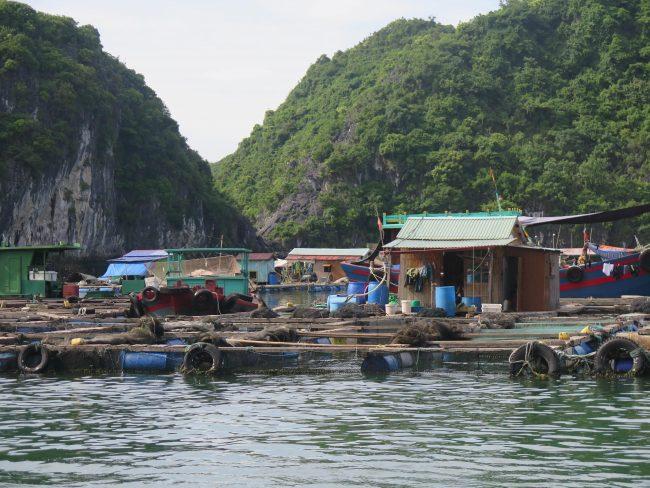 Lo mejor de la Bahía de Halong
