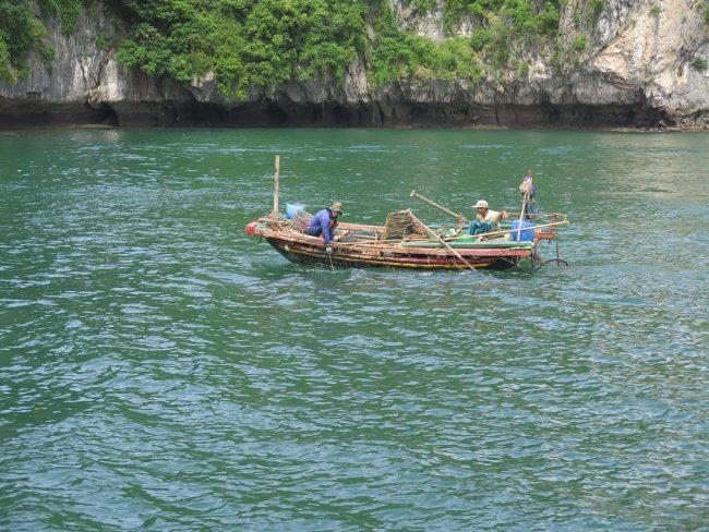 Pecadores en la Bahía de Halong