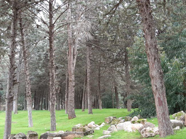 Parque naturales de Líbano