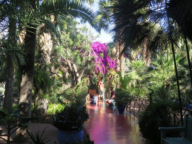 Cuál es la mejor hora para visitar los Jardines de Majorelle