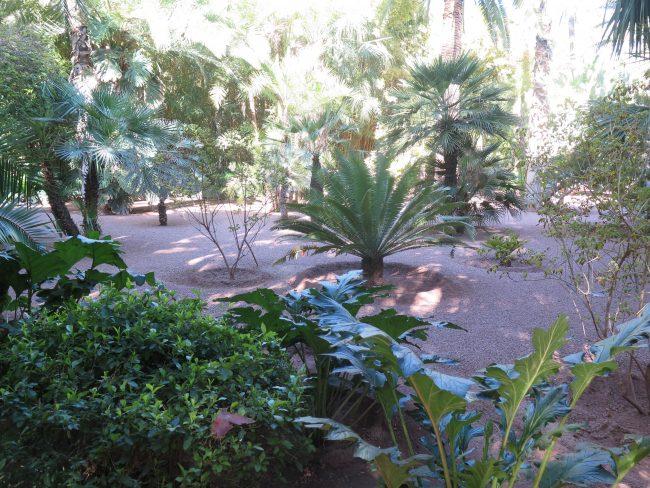 Datos prácticos sobre el Jardín de Majorelle en Marrakech