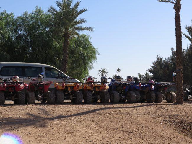 Actividades de ocio en el Palmeral de Marrakech