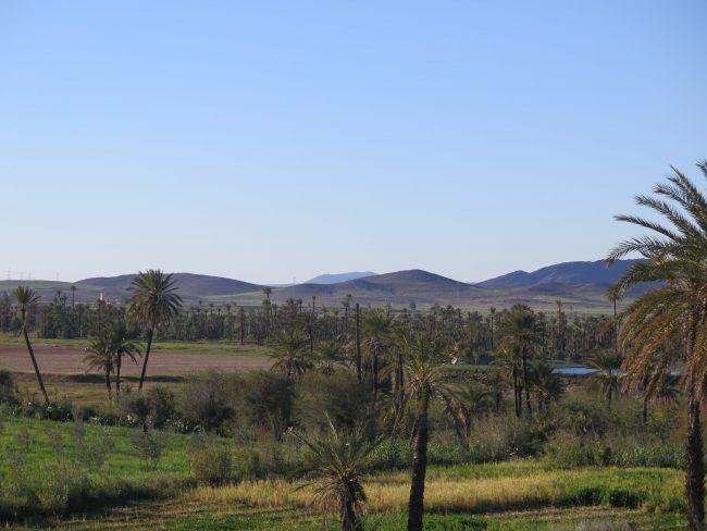 IMG_3090-min-e1558212027848 ▷ El Palmeral de Marrakech