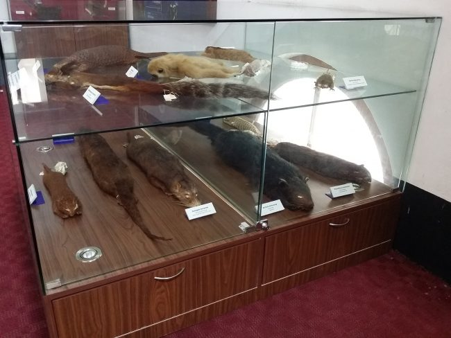 Museos de Kuala Lumpur