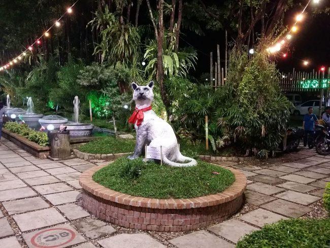 Gatos en Kuching