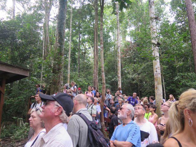 Turismo Sarawak
