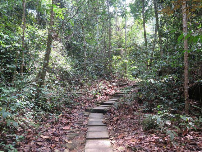 Senderos de Gunung Gading