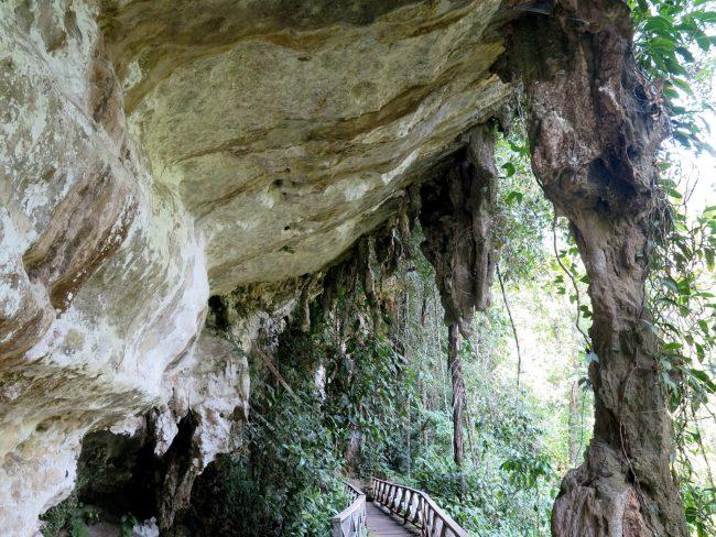 Formaciones calizas en la selva de Borneo