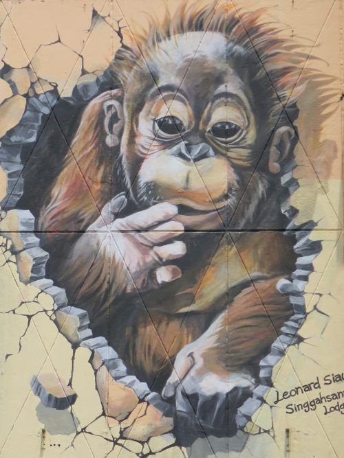 Orangutanes Borneo