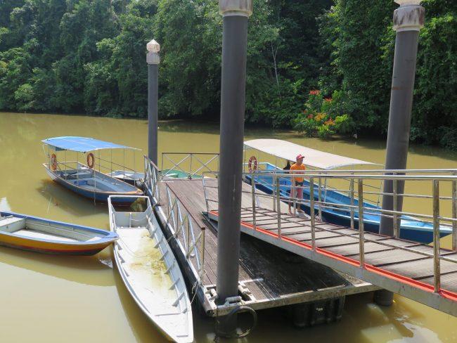 Atravesar el Río Subis en el Parque Nacional de Niah