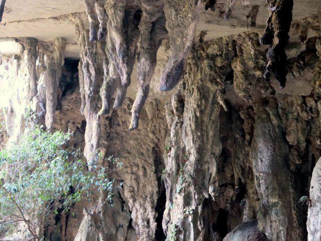 Parques Nacionales de Sarawak