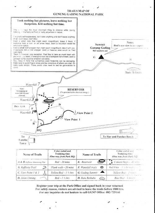 Atracciones del Parque Nacional Gunung Gading