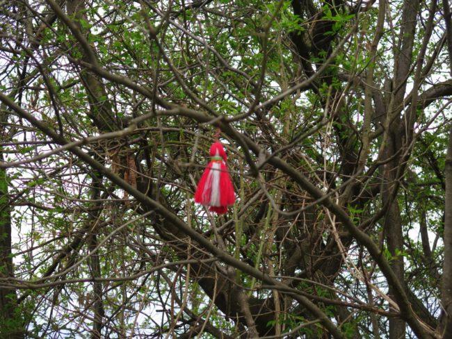 las curiosas pulseras en los árboles de Bulgaria