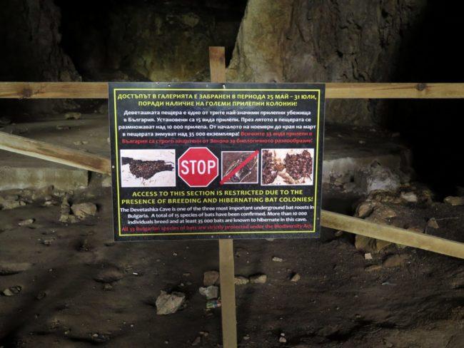 Fauna de la Cueva Devetashka