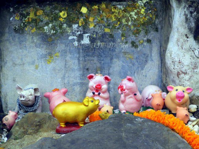 Ofrendas en Tailandia a la escultura de un cerdo
