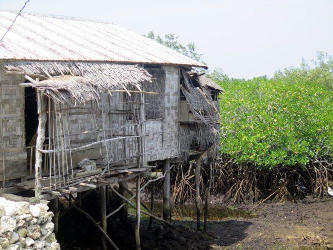 Casas filipinas en los manglares de la zona de Pilar