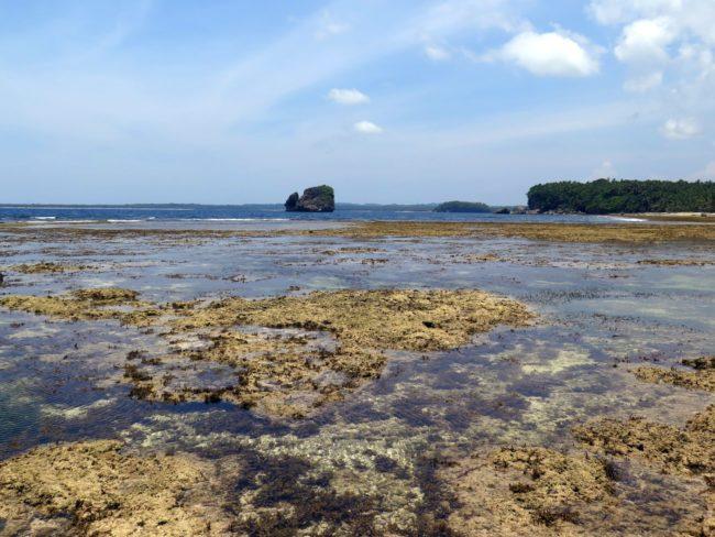 Lo mejor de la Isla de Siargao