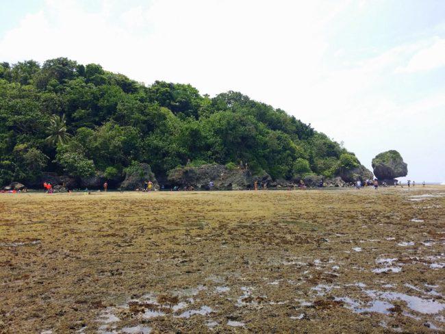 Arrecife en la playa de Mapungpungko