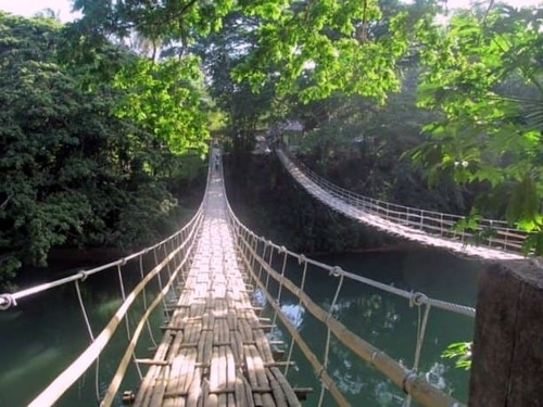 Loboc Twin Hanging Bridge