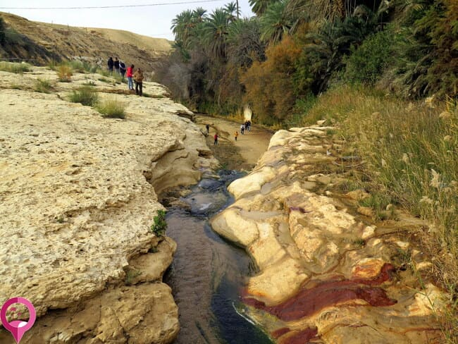 Los bellos colores del Oasis de Tamerza