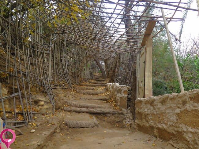 Explorar el Oasis de Tamerza